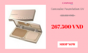 canmake-concealer-foundation-uv